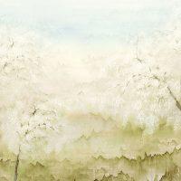Misaki Spring - DG2ISA1031