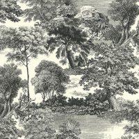 Forest - DG2SAL1011